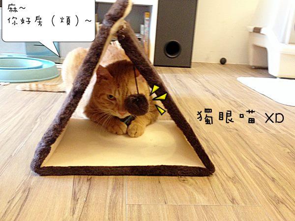 迷你三角飯糰006