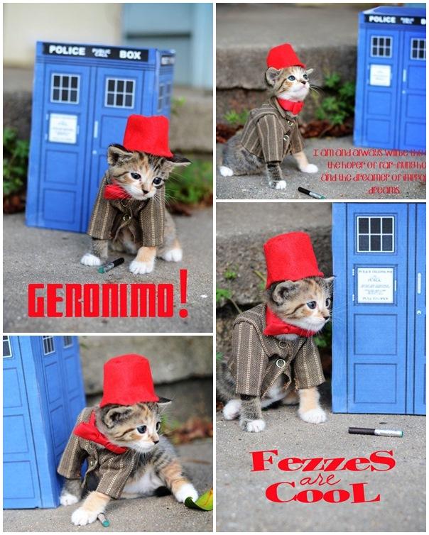 貓咪角色扮演003
