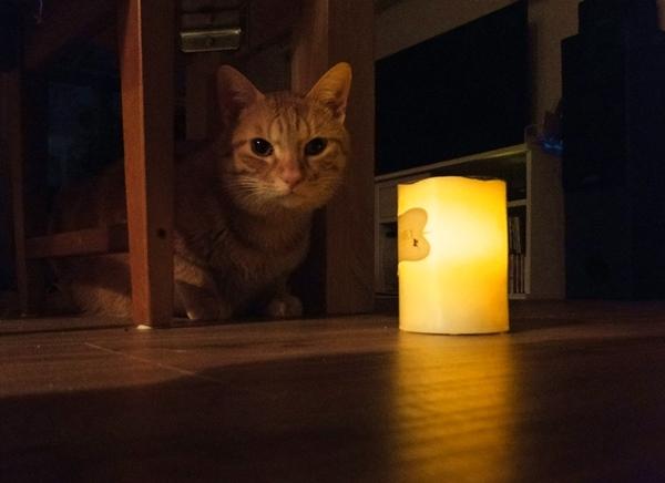 LED蠟燭019