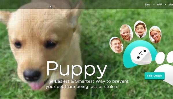 BeLuvv Puppy01