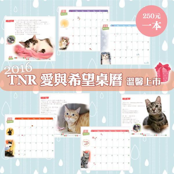 支持流浪貓TNR協會.jpg