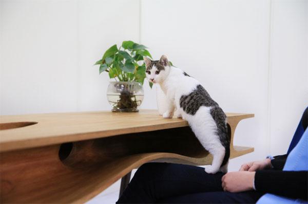 創意貓桌3