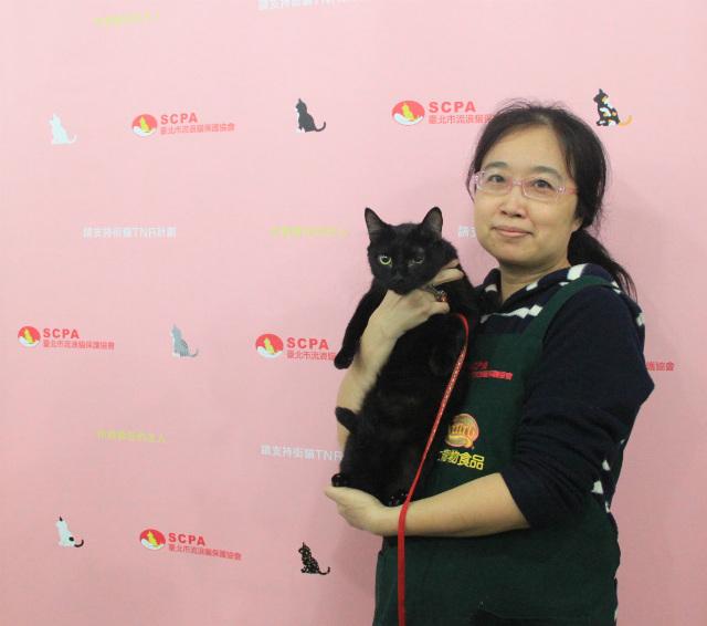 台北市流浪貓保護協會認養活動-貓咪的中途主人