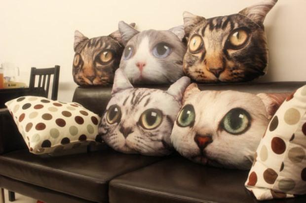 貓咪產品000 cat.jpg