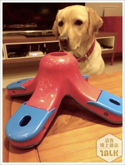 3. 尋寶類的益智玩具也是狗兒的心頭好(文).jpg