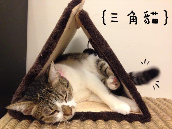 迷你三角飯糰013