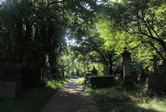 【德國。慕尼黑】慕尼黑的前世今生 - 舊南公墓