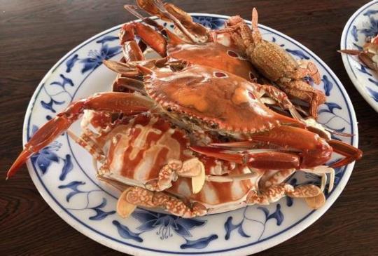【2018新北萬里蟹季】 來去「野柳假日活蟹市集」現買現吃最新鮮的活蟹
