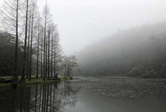 【宜蘭】深山裡的秘境「福山植物園」,探訪野生山羌、獼猴