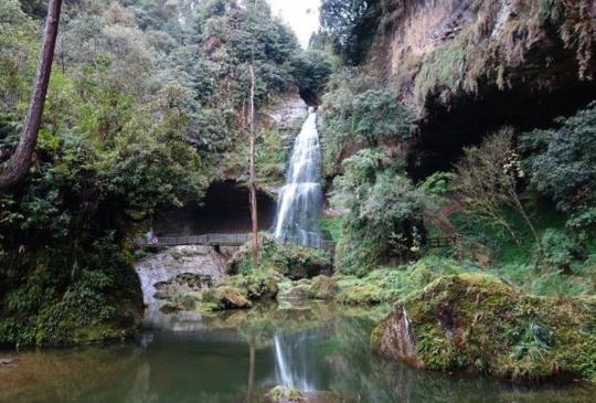【南投】漫遊「杉林溪」之美,觀瀑賞花、大口呼吸芬多精