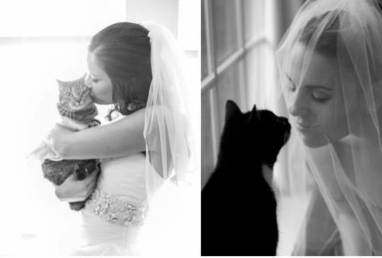 【最溫馨的永恆】絕不能錯過~跟寵物一起拍婚紗的小撇步!