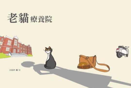 如果有一天,你住進了貓咪開的【老貓療養院】