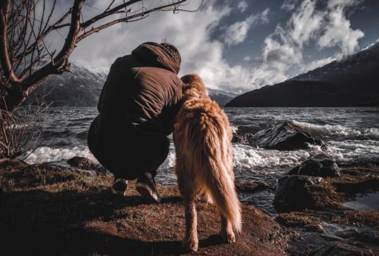 你的狗 其實不需要再交狗朋友
