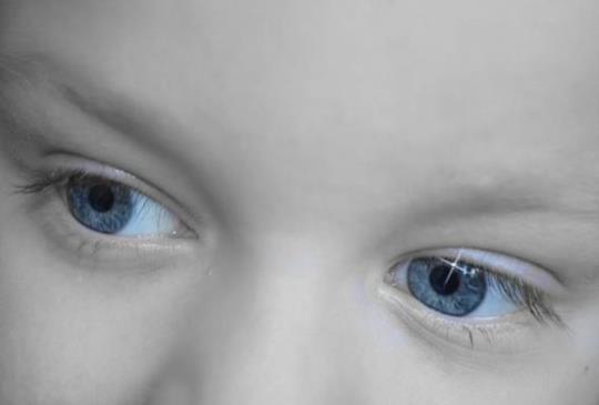 眼睛疲勞要注意!小心眼睛「積勞成疾」-《拯救惡視力,就靠血液力》