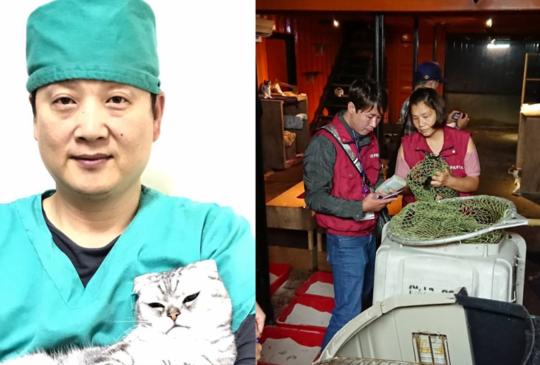 雙和動物醫院院長驟逝 81隻貓盼民眾踴躍認養延續大愛