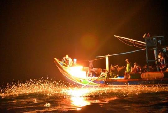 野柳磺火捕魚
