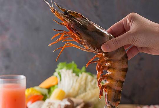 【聚 北海道昆布鍋】3大優惠送給你:壽星5折、對身分證數字吃「巨無霸海虎蝦」、做公益再送買一送一