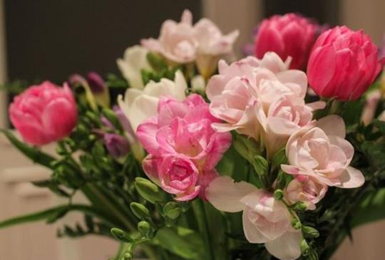 【幸福保鮮的七個秘笈 讓愛情天天行光合作用】~Emily的style風格