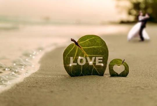 愛人不疑,疑人不愛