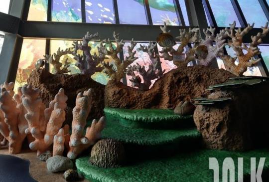 有沈船、一線天、珊瑚礁造景,可以躺進貝殼裡、到船上的國立海洋科技博物館 基隆旅遊景點