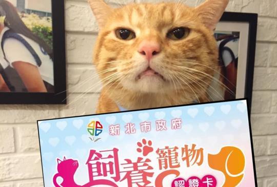 申請【寵物飼養認證卡】 享「免費植晶片」和打疫苗優惠!