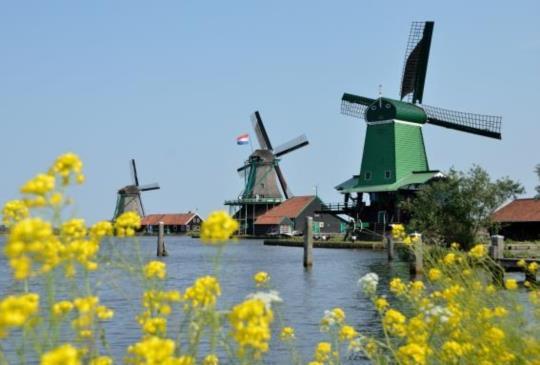 漫遊【荷蘭】風車村!好買好逛好拍一次滿足