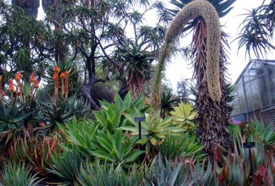 【美國】包羅萬象的洛杉機漢庭頓花園