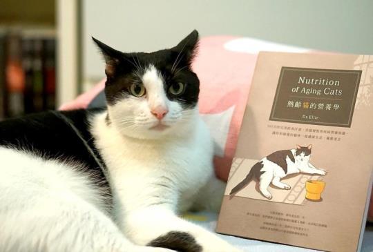 【家有老貓必備飲食聖經】熟齡貓的營養學