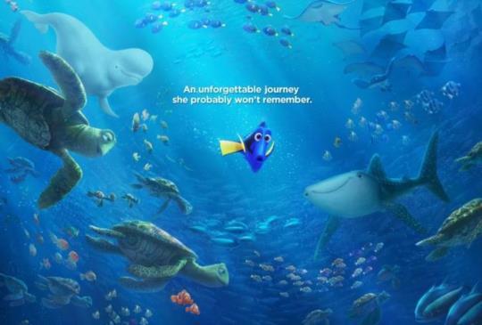 《海底總動員2:多莉去哪兒?》天生我才必有用,你比你所想的還擁有的多