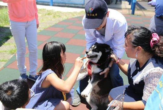 流浪犬守護小學 罹病全校師生動員獲得醫助!