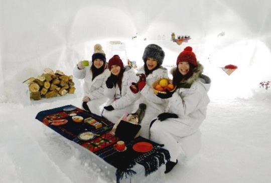 冬遊北海道玩什麼?滑雪渡假村2日遊最夯!