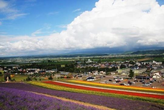 『北海道、美瑛、富良野』夏季薰衣草私房賞花景點大公開