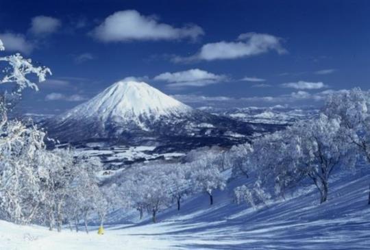 【日本最受歡迎的觀光都市,猜猜第一名是哪裡?】