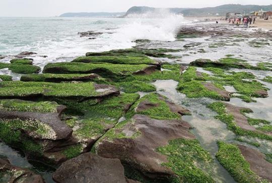 【新北市】遺世獨立,灑落海岸線的寶石:老梅綠石槽 + 南雅奇岩