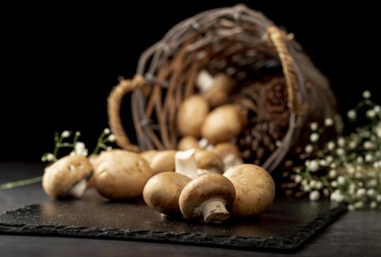 蘑菇 - 提升免疫系統的食密技