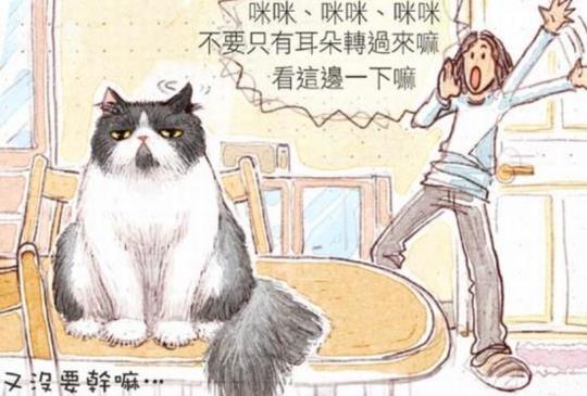 【貓貓塗鴉】幽默生動的貓咪漫畫