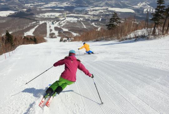 【日本】冬季旅遊首選十大家庭滑雪度假村