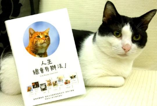 《人生總會有辦法》貓咪給你的68個幸福法則