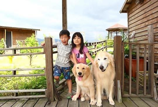【和狗狗一起去旅行】友善寵物、親子民宿懶人包
