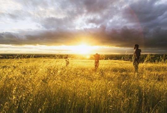南法普羅旺斯:紫色薰衣草3大經典路線浪漫遊