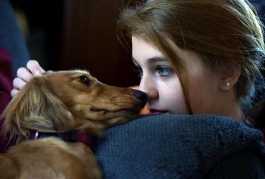 【你會跟毛小孩親親嗎?當心犬蛔蟲上身,阿茲海默症提早報到!】