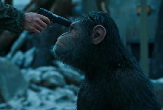 【《猩球崛起:終極決戰》受過苦才能理解別人的苦。】