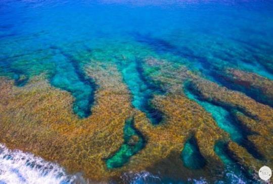 潛水教練私房推薦 沖繩不為人知的七大絕景