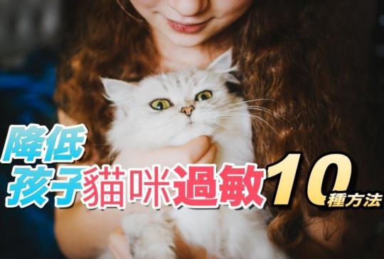 【貓咪與孩童】幫助孩子降低「貓咪過敏」症狀的10個方法