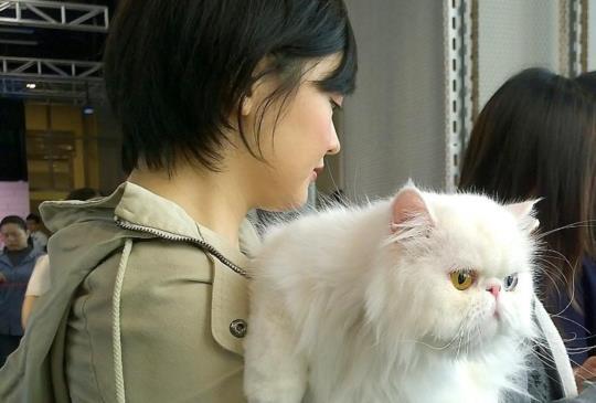 《管教惡貓》貓老爹現身台北,傳授馴貓秘笈、聊聊小祕密