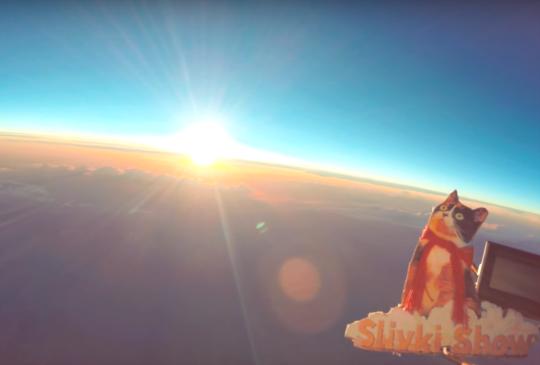 【喵星人登陸地球旅程全記錄】令人瞠目結舌的美麗奇觀
