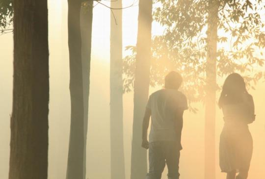 在《挪威的森林》,坐望青春的迷失與蛻變