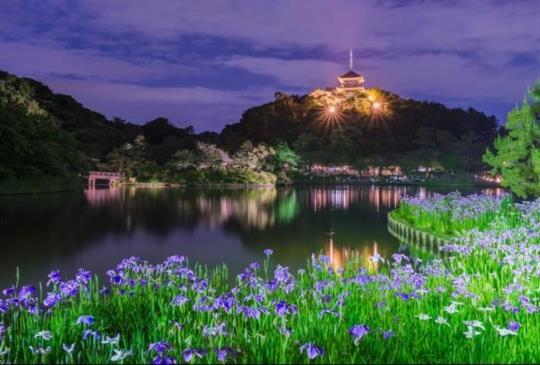 【初夏限定‧2016東日本螢光舞會夢幻秘境特搜,一起相約螢火蟲季】