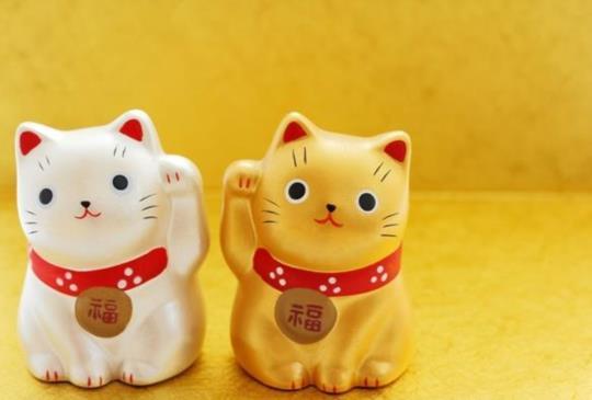 【求良緣選黃色?驅除厄運選黑色?找隻招財貓當夥伴,招來好運吧】