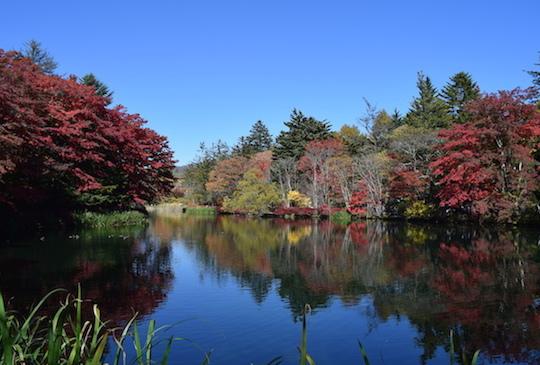 【日本】深秋單車遊輕井澤 探秘如詩畫作的雲場池